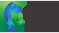 Zenith Spine & Wellness Logo